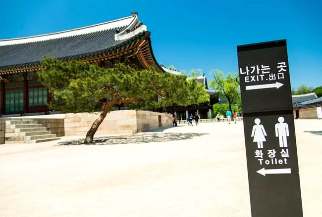 Đi du lịch, đừng quên các quy tắc nhà vệ sinh công cộng khắp thế giới!