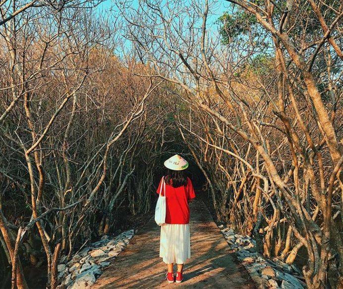 Top 9 địa điểm check in đẹp nín thở khi du lịch Huế