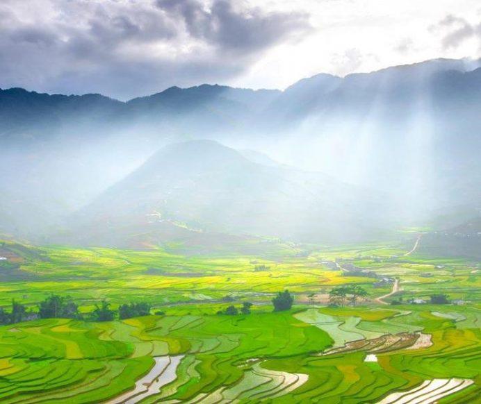 Mùa thu, check-in mùa lúa chín tại 7 vùng đất mùa vàng nổi tiếng