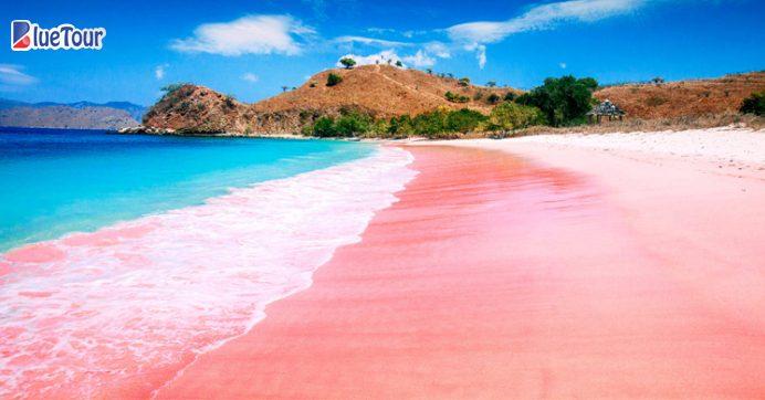 Như cổ tích khi tới bãi biển màu hồng