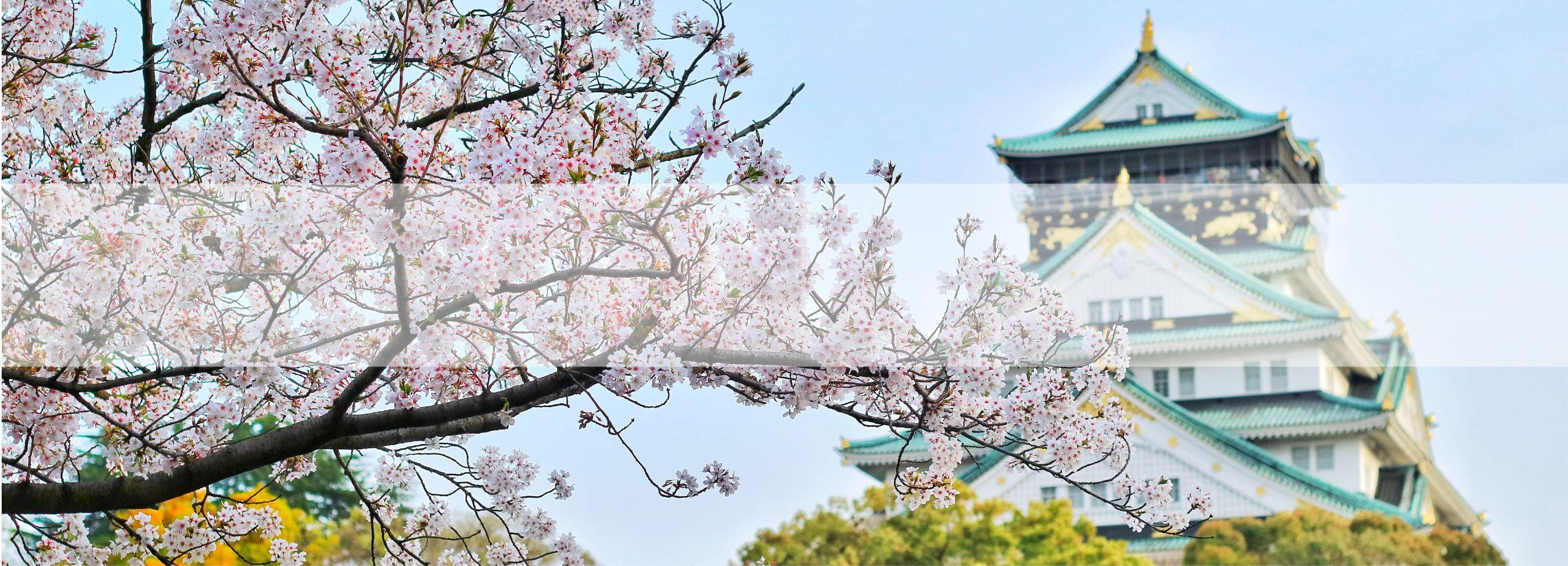 Du lịch Nhật Bản - Bluetour